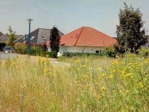 Bernhard-Wemmer-Strasse, Elten (Emmerich), Duitsland