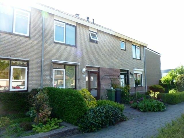 Alkmaarsingel, Arnhem, Nederland
